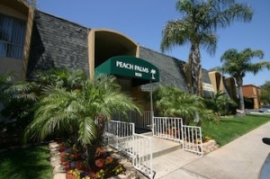 Peach Palms apartments