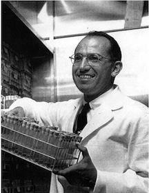 Jonas Salk in laboratory. (Photo/Courtesy of Mandeville Special Collections Library, UCSD)