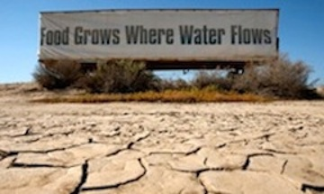 California's Central Valley -- prime agricultural land -- is being hit the hardest by the statewide drought which could cause catastrophic losses to crops and food supply.
