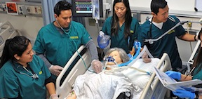 Grossmont College nursing students.