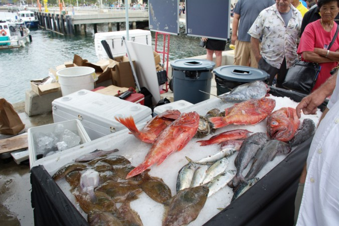 Daily business report dec 22 2014 san diego metro magazine for Harbor fish market