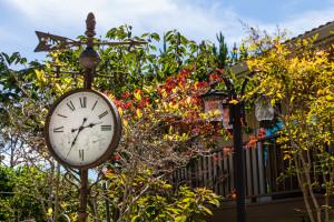 The Vendange garden