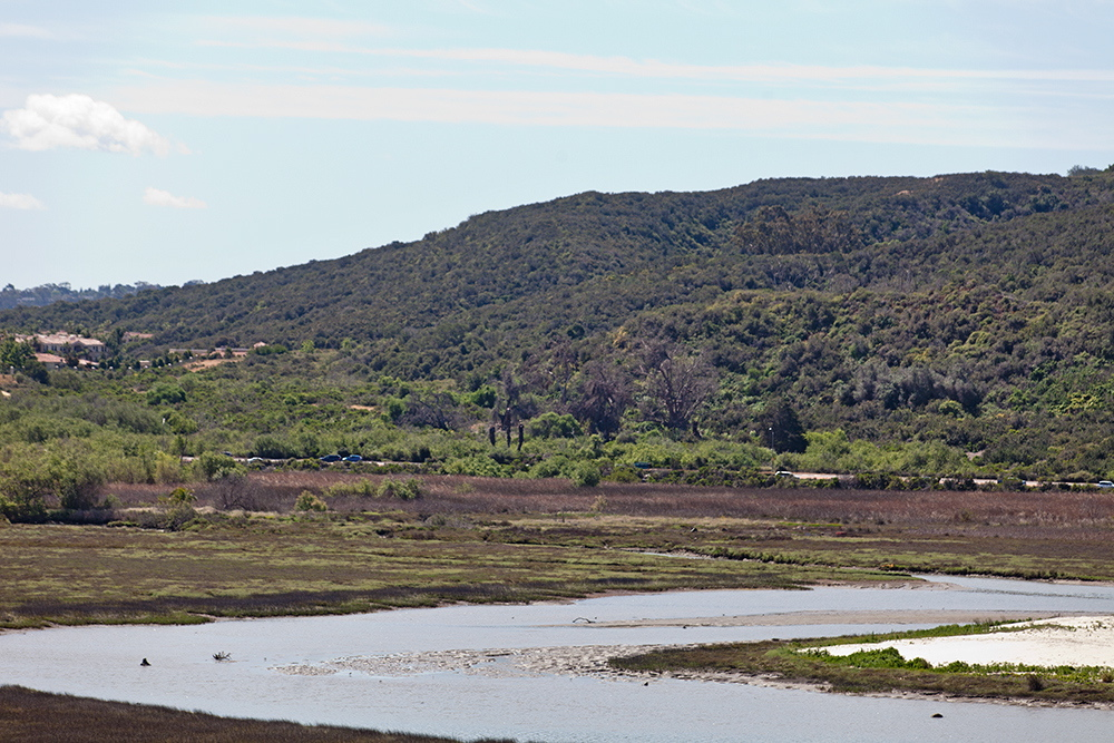 Photo of the area to be preserved next to Batiquitos Lagoon. Photo courtesy of Sandag.
