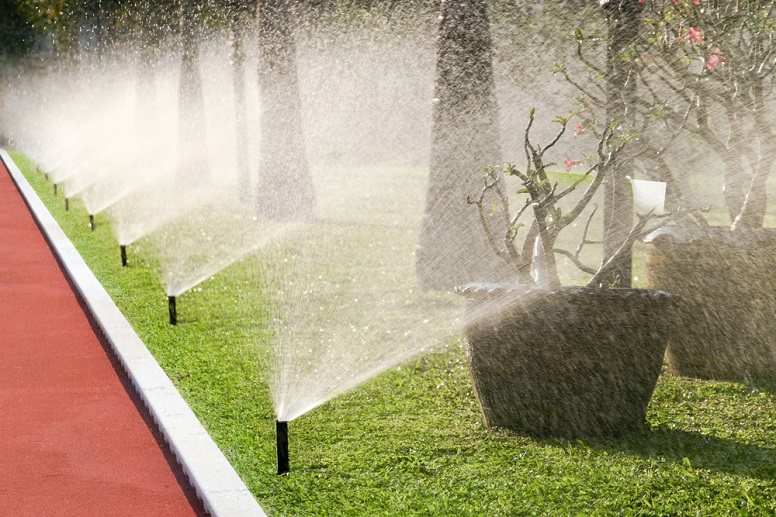 The city has run out of money to reimburse residents who replace thirsty lawns with drought-resistant plants or artificial turf, but there are still some options for anyone looking for a rebate and to reduce outdoor watering.