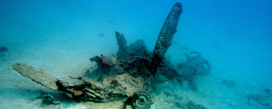 Submerged wreckage of a U.S. Navy Curtiss SB2C Helldiver aircraft. (Photo: Eric Terrill/Scripps Oceanography)