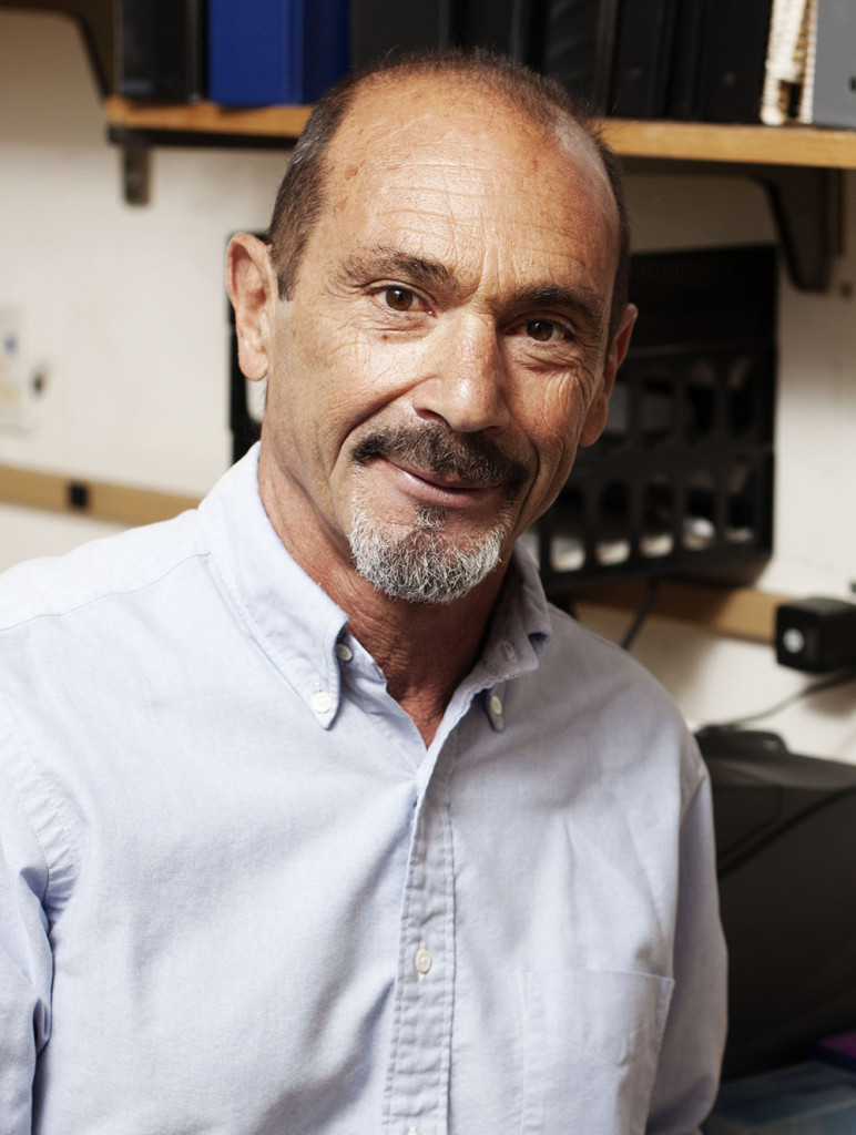 Steven Reed is a professor at The Scripps Research Institute.