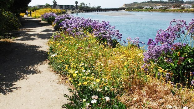 A portion of the Del Mar River Path. (Photo: Priscilla Lister)