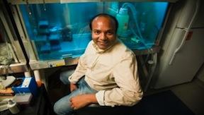 Sumit Chanda, director of the Immunity and Pathogenesis Program