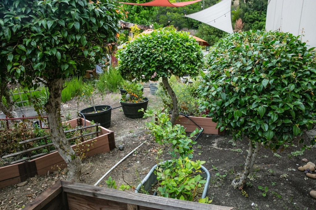 Kitchen 4140 Garden