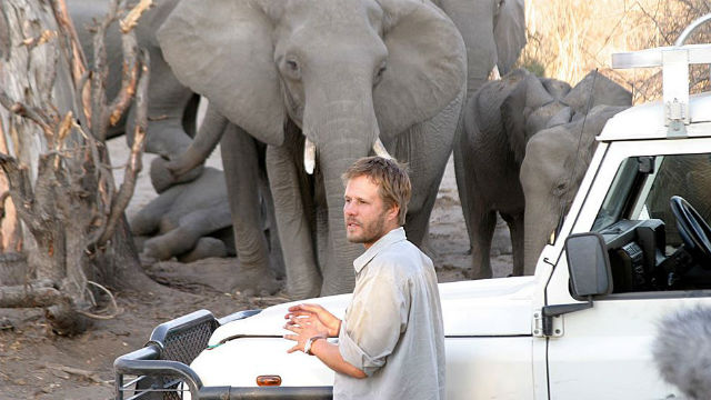 Michael Chase with elephants in southern Africa.