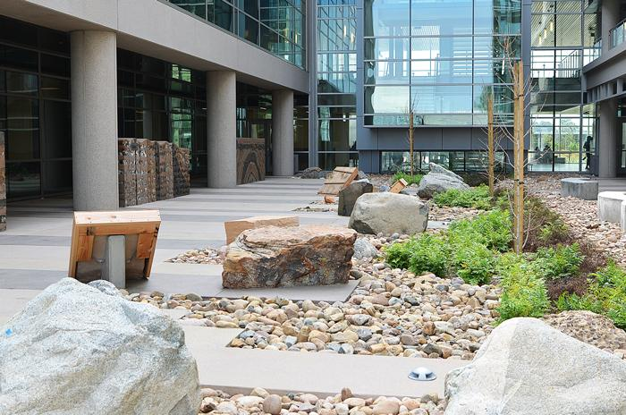 Mesa College landscaping