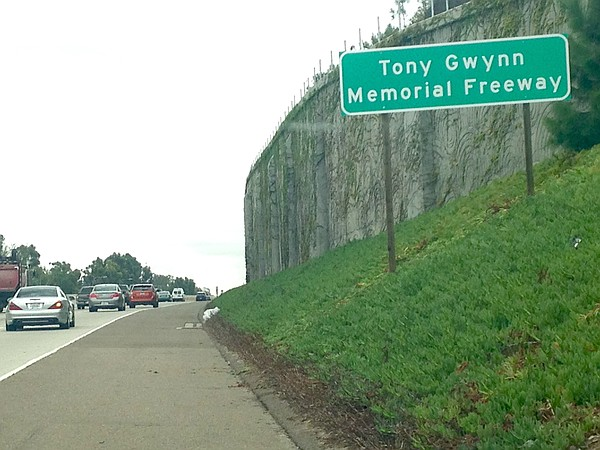 A sign designates a portion of Interstate 15 in North County as Tony Gwynn Memorial Freeway, Oct. 19, 2015. (Photo/Matthew Bowler)