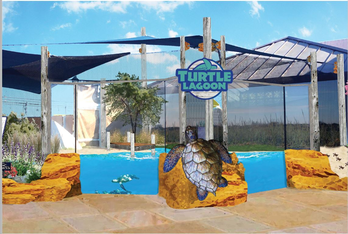 Rendering of the Turtle Lagoon exhibit after enhancement