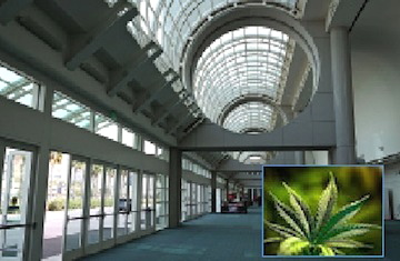 The event, officially titled the San Diego Cannabis Conference & Expo, is slated for Aug. 6-7 at the convention center.