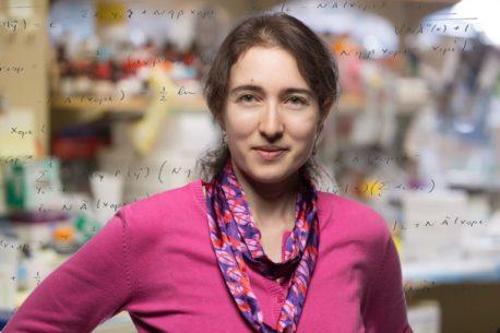 Salk Associate Professor Tatyana Sharpee