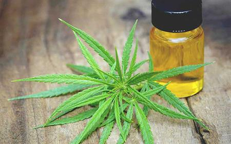 New grants at CMCR will fund investigations into therapeutic uses of cannabis and CBD to treat a host of disorders, from arthritis to insomnia. (Photo credit: Pixabay)
